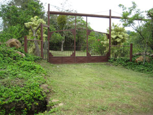 The inviting entrance to the property has a tall automated gate.