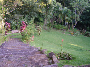 From the house, a path leads down the landscaped slope to the stream.